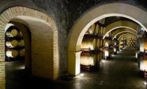 El PSOE pide al Gobierno que dispense a los pequeños productores de vino de sus obligaciones de control