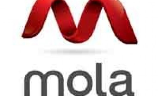 Mola invertirá en diversas startups con miras de internacionalización