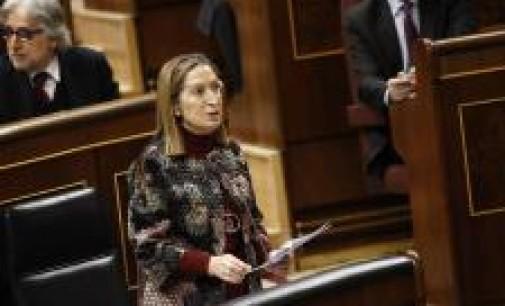 El PSOE 'bombardeará' a Pastor el miércoles con preguntas sobre el AVE, en plena polémica con C's