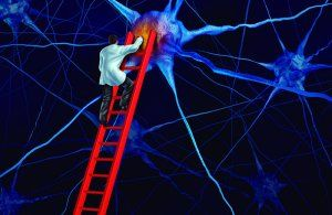 especialistas en epilepsia