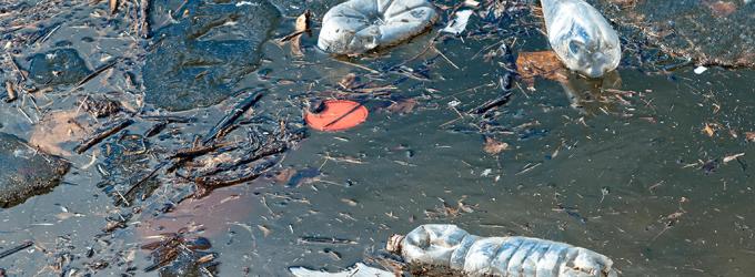 Voluntariado y talento por la limpieza de mares y ríos