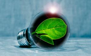 La RSC de EY busca un desarrollo sostenible