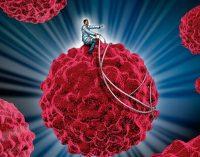 """Inmunoterapia: """"una etapa muy esperanzadora para la oncología"""""""