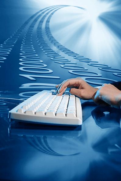El empleo en la transformación digital.