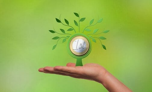 El ICO concede su primer crédito verde: ¿qué es y quién es el beneficiario?