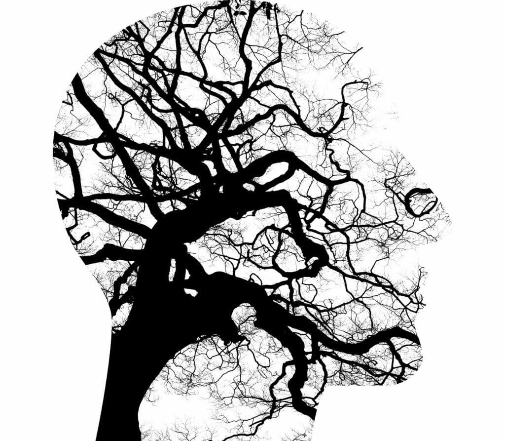 la digitalización afecta a las emociones y la salud mental.