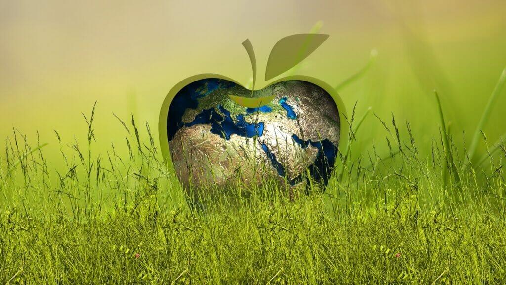 sostenibilidad.