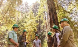 Acuerdo a cinco años entre HP y WWF por la conservación de los bosques