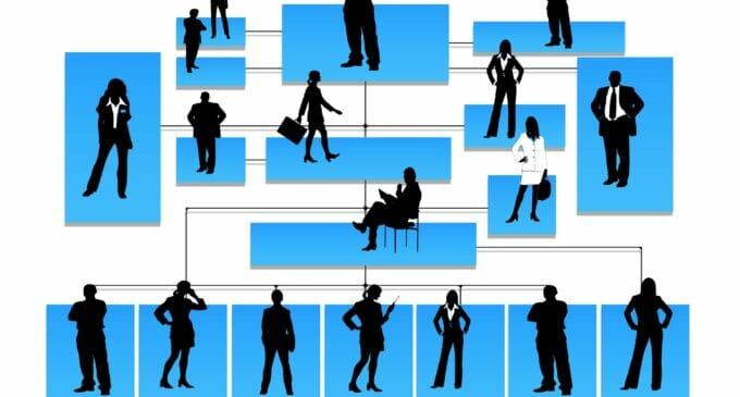 Mercado laboral estable: solo 6 de cada 100 empleados experimentan cambios cada mes