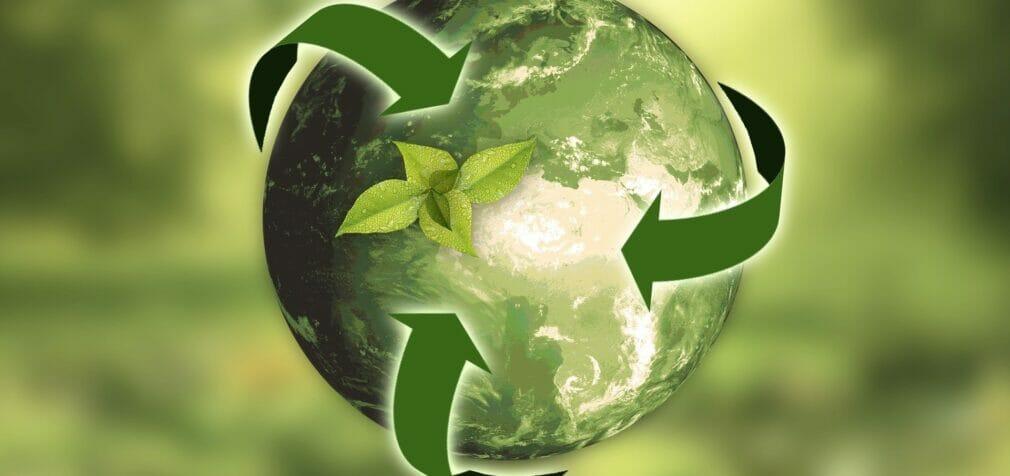 Economía circular y desarrollo sostenible: la verdadera transición