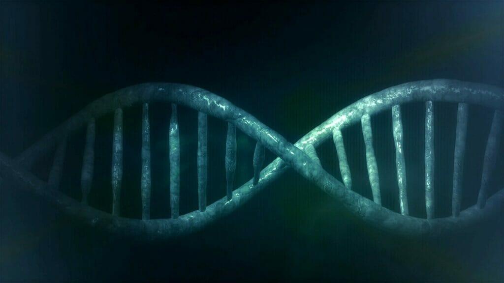 investigación genética.