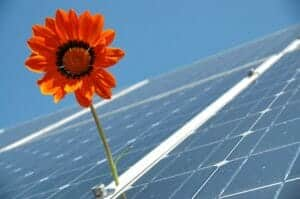 Primer proyecto a gran escala de energías renovables de Amazon en España