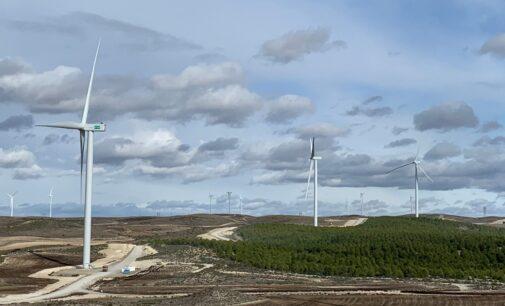 Energía renovable es también energía para el empleo de la España Vaciada