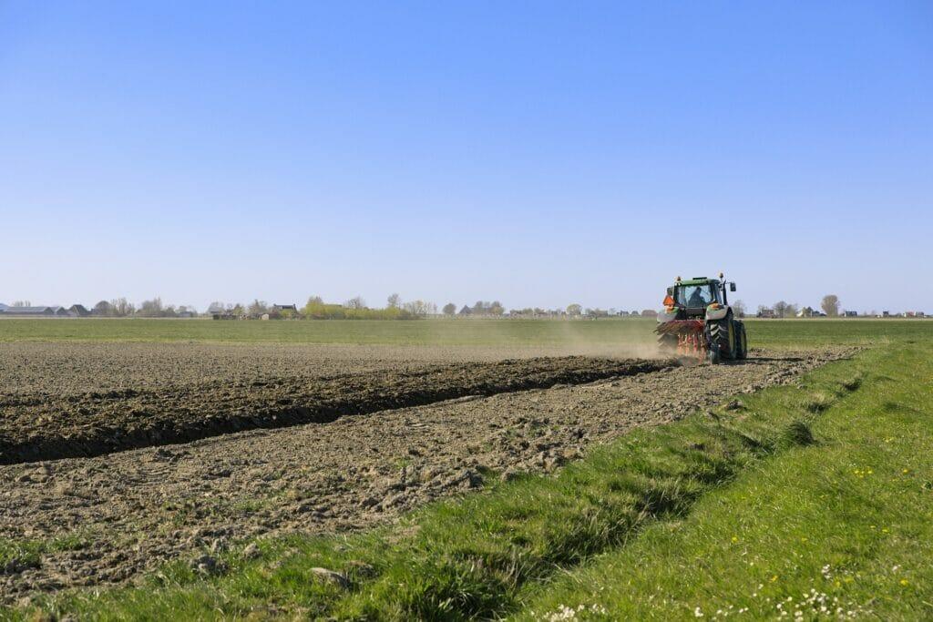 Tras las crisis del Covid, hay que fomentar el consumo de productos locales agroalimentarios.