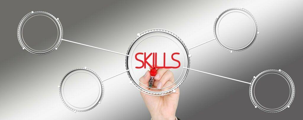 skills profesionales