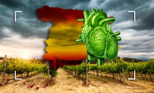 Mercados agroalimentarios y política comercial en la época de COVID-19