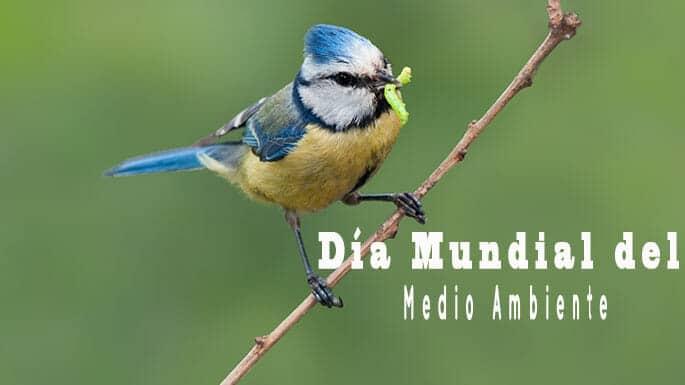 DMMA-biodiversidad-SUEZ