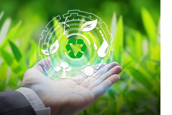 ¿Qué es el marketing verde?
