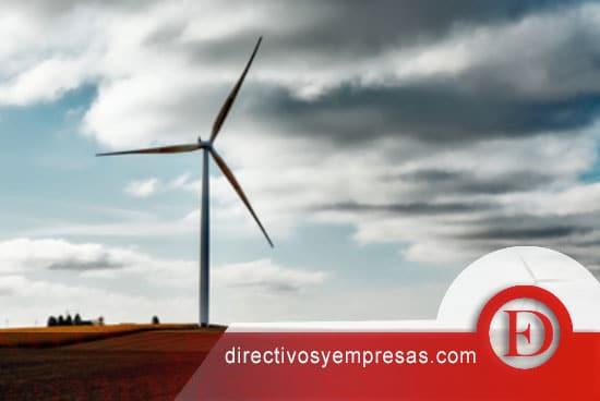 ideas de negocio rentables para el medio ambiente
