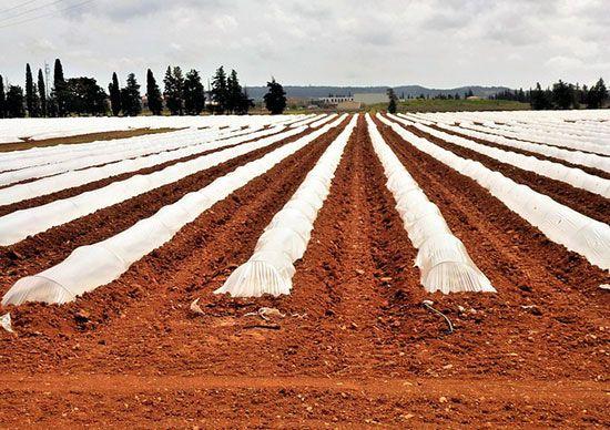 santander-llama-a-los-emprendedores-del-mundo-agro