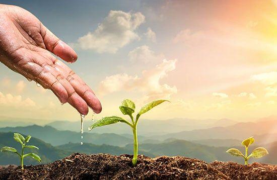 transformación-del-sector-del-agua